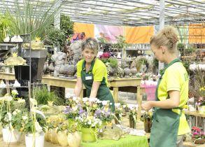 Adventsausstellung Adventsmarkt In Fürth Atzenhof Gartencenter